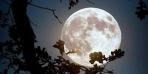 بالصورة.. نيزك في سماء بغداد والليلة ظاهرة للقمر