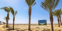مزرعة تابعة للعتبة الحسينية تستحدث زراعة اصنافا جديدة