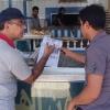 حملات توعية لحث المواطنين على ترشيد وعدم التجاوز على الشبكة الكهربائية