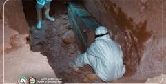 فرقة الإمام علي تدفن 21 متوفي بجائحة كورونا في وادي السلام